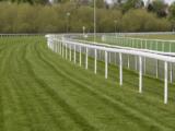 Les différentes étapes d'aménagement pour créer une piste d'équitation